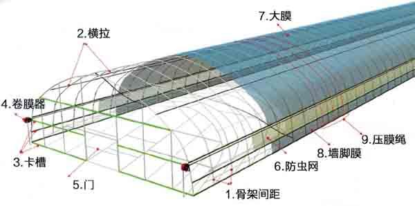 单体拱棚效果图