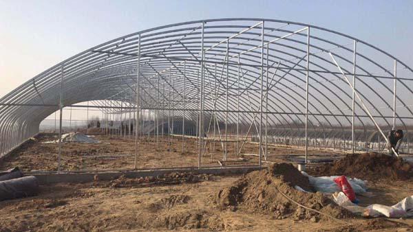 大跨度拱棚日光温室